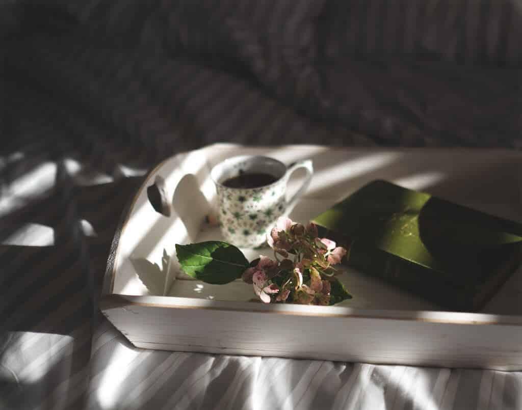 articulos-recomendados--centro-de-psicoterapia-vinculo