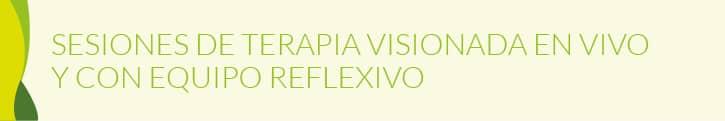 SESIONES DE TERAPIA VISIONADA EN VIVO Y CON EQUIPO REFLEXIVO